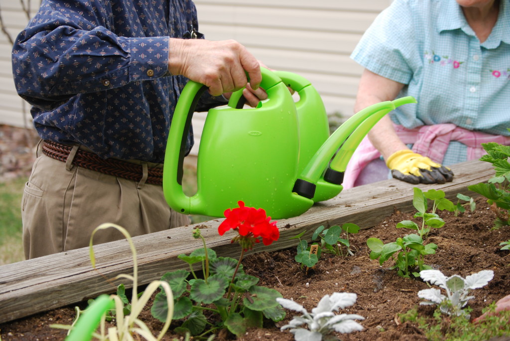 Therapeutic Horticulture - tips on engaging elders outdoors