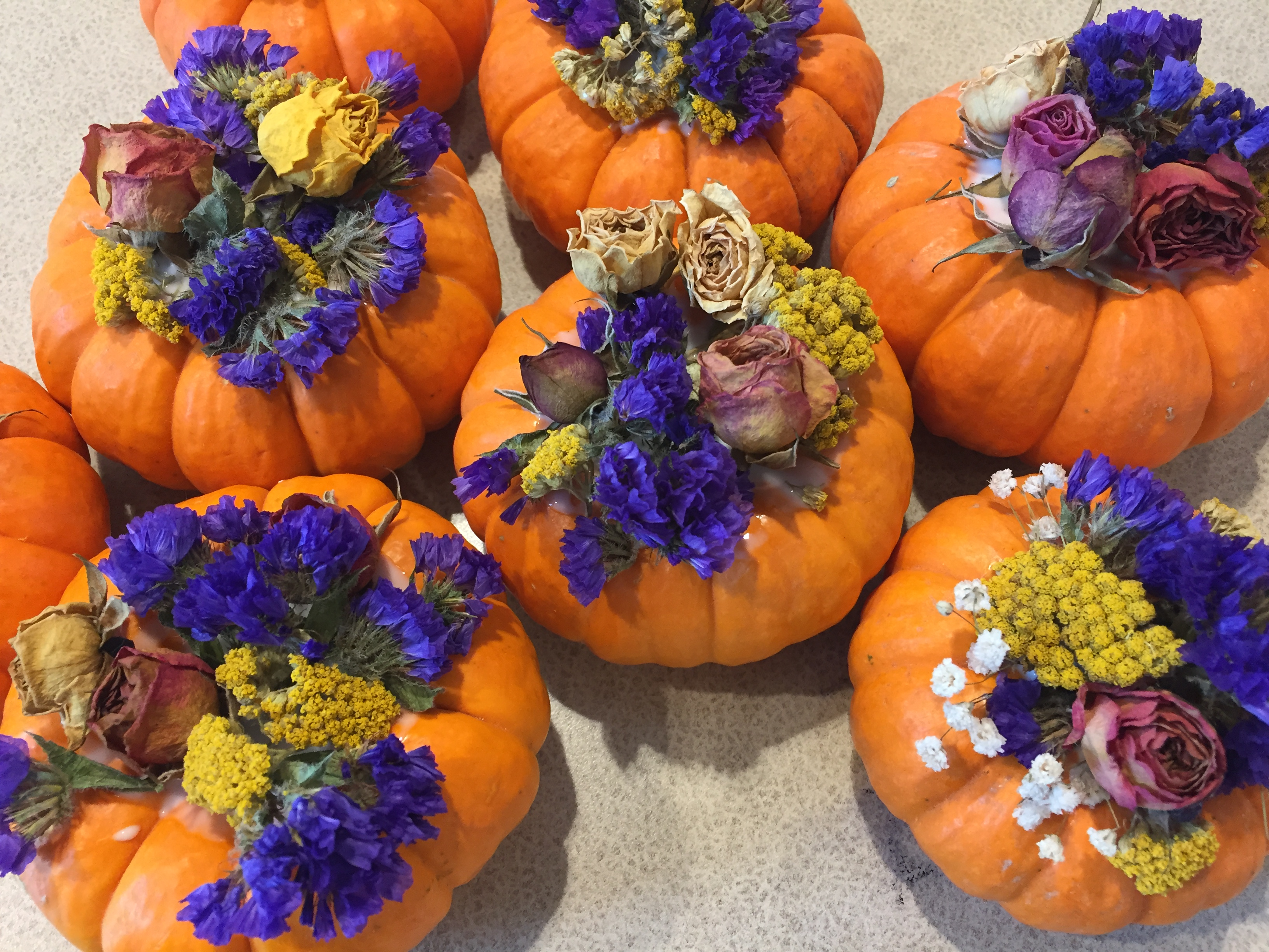 a gallery of fun fall horticultural activities eat breathe